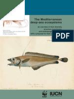 The Mediterranean Deep-sea Ecosystems