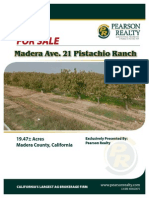 19.47 Acres Madera Ave 21 Pistachio Ranch For Sale