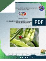 2002. OIRSA. Guía Técnica Del Cultivo de Loroco