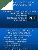 corrosao microbiana5