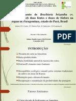 Apresentação de Forragicultura - Estabelecimento de Brachiaria Brizantha Cv. Marandu Sob Duas Fontes e Doses de Fósforo Na Região de Paragominas, Estado Do Pará, Brasil