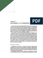 Wachtel Los Indios y La Conquista Española