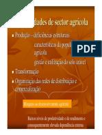 As Debilidades de Sector Agricola1
