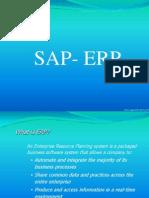 8818990-SAP-Basics