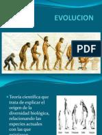 Sem 17 - Evolucion