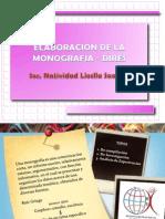 Monografía-DIRES