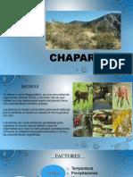 Chaparral Diapo