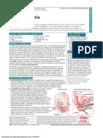 PDF Pat 120711