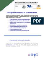 3.1 Guia Residencias Profesionales