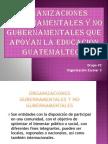 Organizaciones Gubernamentales y No Gubernamentales Que Apoyan La