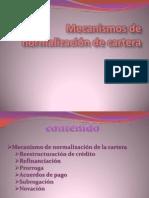 Mecanismos de Normalizacin de Cartera Expo[2][1]