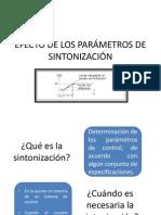 Efecto de Los Parámetros de Sintonización