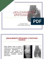 Tema 12. Deslizamiento Fisario