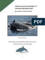 El Delfin Mular