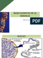 Bases Quimicas de La Herencia