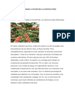 Medidas Oportunas a Favor de La Caficultura Peruana