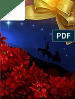 Tarjeta Navidad 2010 Presidente