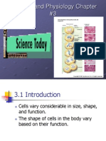Anatomy and Physiology Chapter 3