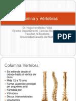 76710949 2 Columna y Vertebras Medula Espinal