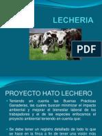 Lecheria i