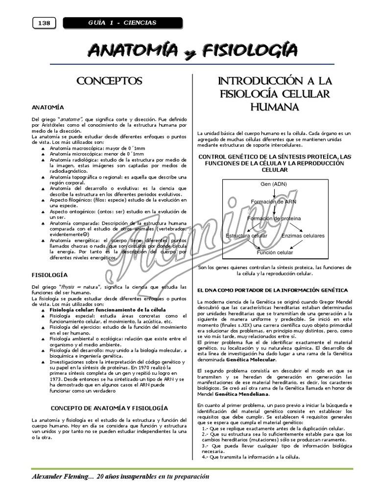 Dorable Anatomía Humana Y De Laboratorio Versión Gato Manual De La ...