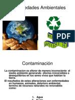 enfermedadesambientales-091017041417-phpapp01