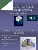 Modelo de Organizaçaõ Funcional
