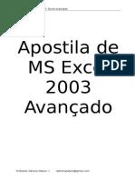 MS Excel 2003 Avancado