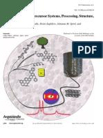 Carbon Fibers Precursor Systems, Processing, Structure, Properties