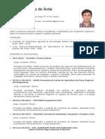 CurriculumVitae Williams Avila1