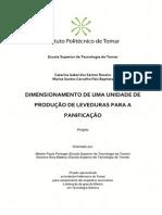 Dimensionamento de Uma Unidade de Produção de Leveduras Para a Panificação - Catarina Roseiro e Marisa Baptista - Projeto de Mestrado Em Tecnologia Química