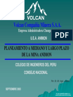 Pla Mediano y Largo Plazo Animon-VOLCAN