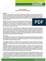 Hornillas Paneleras Evaluacion de Su Impacto Ambiental[1]