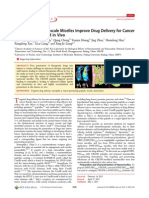 Functionalized Nanoscale Micelles Improve Drug Delivery for Cancer Therapy in Vitro and in Vivo
