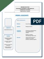 Formato Perfil Docente (2)