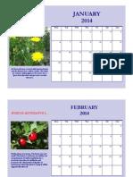 Calendario Prof de Domenico