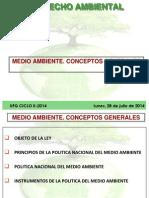 Damo Gr01 5a Sesion Medio Ambiente. Conceptos Generales