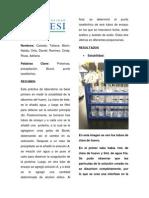 Laboratorio Proteínas V