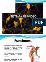 Ppt Sistema Nervioso