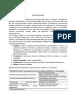 Preinforme Fisio 2.0.