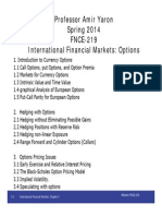 International Financial Markets Options