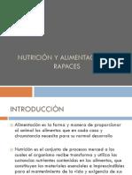 6.Nutricion