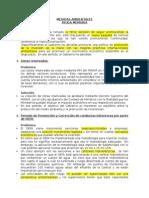2014-06-13 Am Medidas Ambientales Minam Analisis Del Mef Castilla