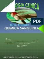 Quimica Sanguinea Presentacion