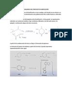Bioquimica Del Proceso de Humificación