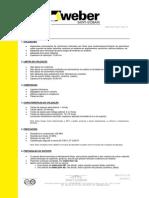 FT_weber.floor_fluid_v0.pdf