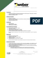 FT_weber.floor_for_v0.pdf