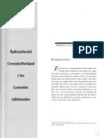 Aplicación del Cemento Portland y los Cementos Adicionados, Rodrigo Salamanca Cporrea