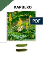 CHN Akapulko