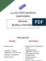 bacilosgrampositivosesporuladosmodificada-121011184940-phpapp02